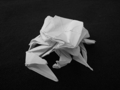 Origami_Gallery/Old/Fiddler Crab_0.bw.jpg
