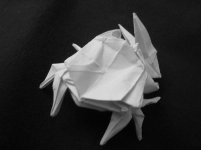 Origami_Gallery/Old/Fiddler Crab_1.bw.jpg